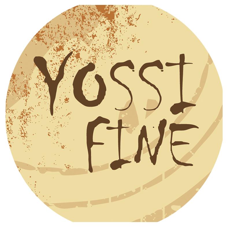 Yossi Fine